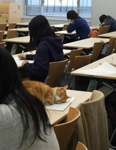 这位同学,请上课不要打瞌睡