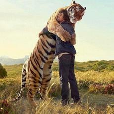 阿虎和他的晚餐!