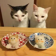 猫咪,开饭了~