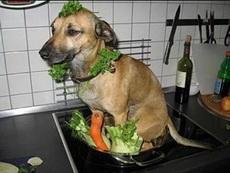 现在做顿饭太难了!