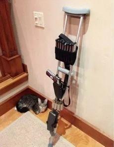 开局一只拐、一只猫,装备全靠打