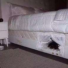 这个床设计的不错