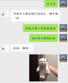 哈哈哈,中华文化博大精深
