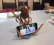 芭比娃娃的新用途