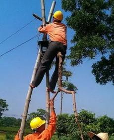 作為一個專業的電工,沒有梯子根本難不倒我