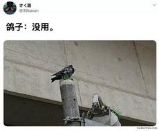不扎jiao么