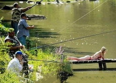 专心致志的钓鱼