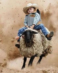 我是斗羊仔
