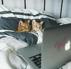 今天休息,和女朋友看个大片。