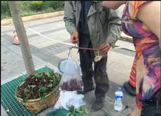卖杨梅的老人说秤砣被抢走了,他用了个石头替代