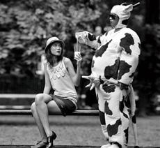 vender leche en una manera extraña