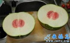 今天买了个西瓜,回家一看,呆了……