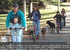 美國最新款遛狗自行車