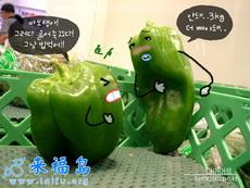 噢,你这拳打得我真痛-韩国生活创意超可爱小图
