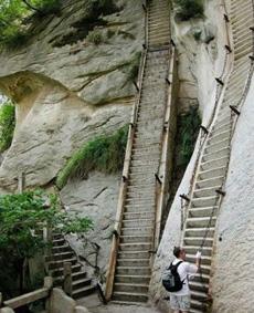这应该是最陡的梯子了吧