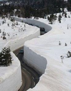 這雪也太厚了啊