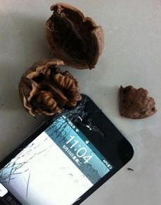 是谁说的iphone可以砸核桃的?我和他拼了!!!!!