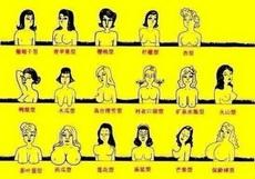你是什么型的