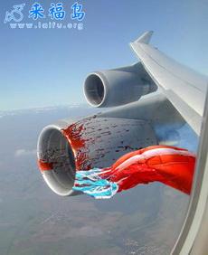 如果你坐飞机时发现……