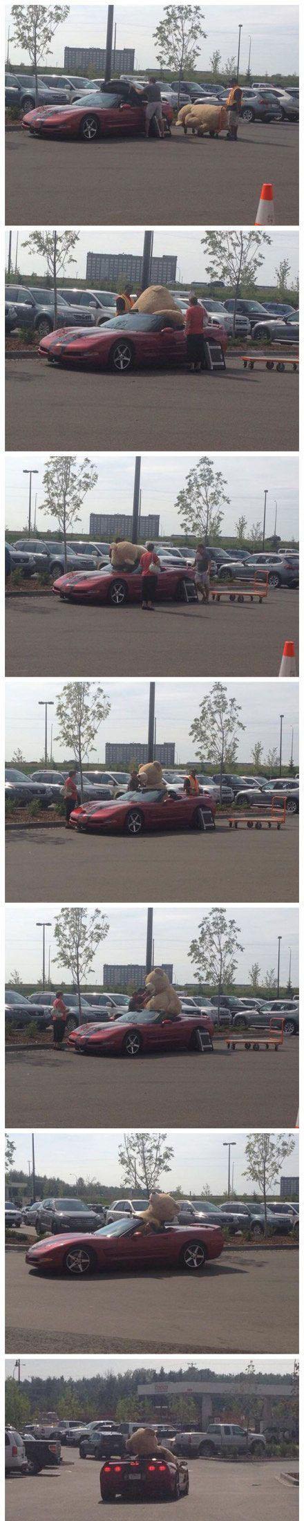 一哥们买了一只超大号的玩具熊之后[搞笑交通]