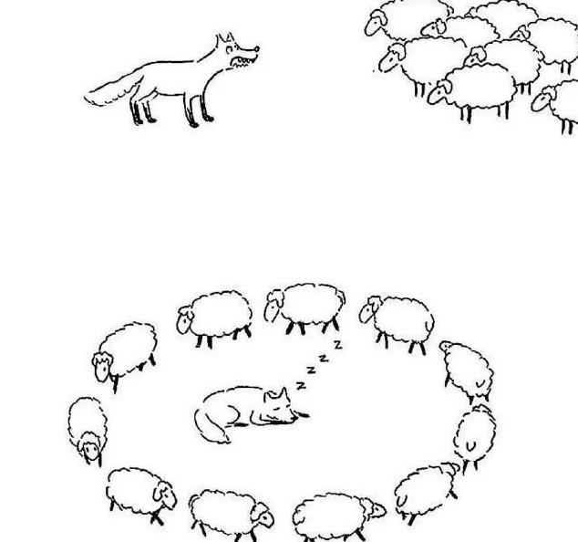 数羊数睡了