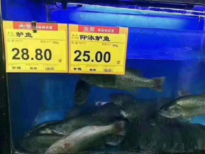 顧客:你當我傻子呢?給我來兩條仰泳鱸魚!